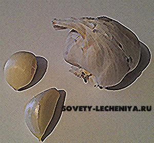 chesnok-dlya-lecheniya-detej
