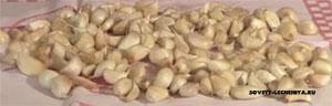 lechebnye-svojstva-chesnoka