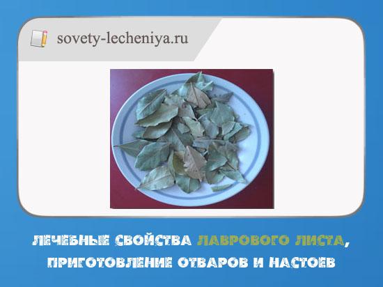 lechebnye-svojstva-lavrovogo-lista-prigotovlenie-otvarov-i-nastoev