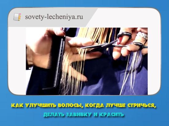 kak-uluchshit-volosy-kogda-luchshe-strichsya-delat-zavivku-i-krasit
