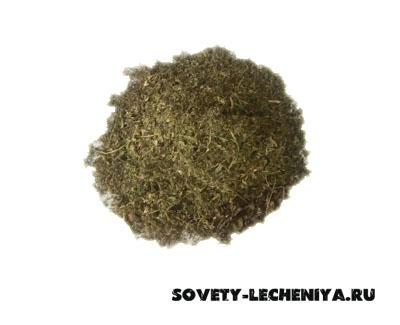 pastushya-sumka-obyknovennaya