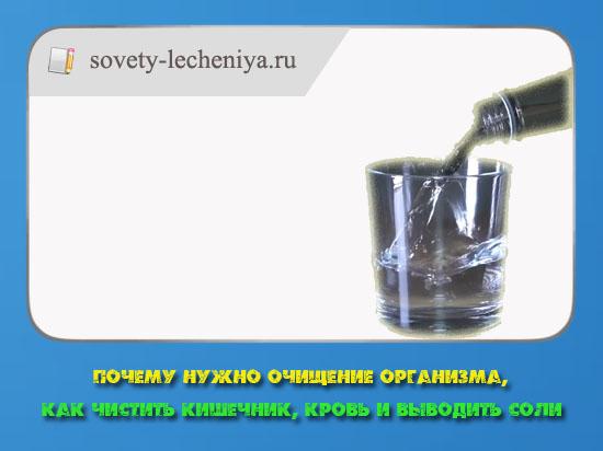pochemu-nuzhno-ochishenie-organizma-kak-chistit-kishechnik-krov-i-vyvodit-soli