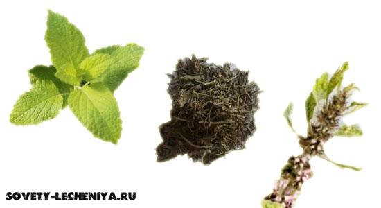 травы - мелиса, корень валерианы, пустырник