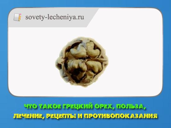 Что такое грецкий орех, польза, лечение, рецепты и противопоказания