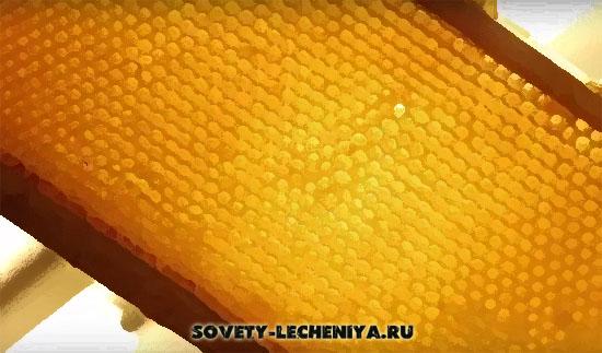 02-Пчелиный мед